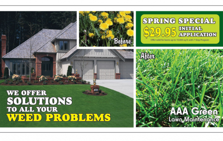 Direct mail and postcard marketing is the best way to get a guaranteed moment to introduce your lawn care business to potential customers.